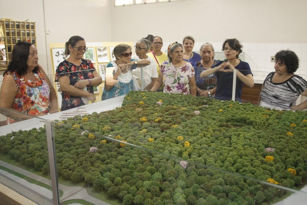 Parte do grupo atentos as explicações sobre a maquete do Parque Zoobotânico